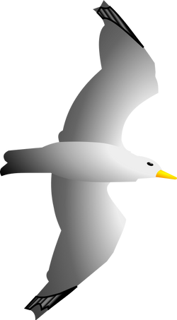 Seagull_Remix_by_Merlin2525