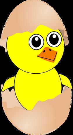 Chick_007_Newborn_Egg_Cartoon