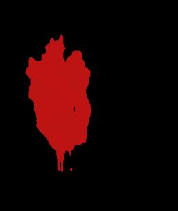 Scar transparent images