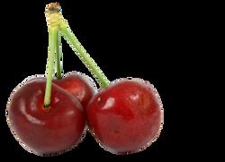 berry-1239075_Clip
