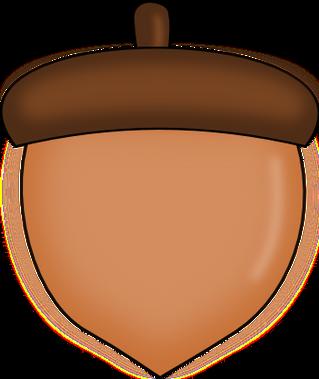 Acorn PNG images