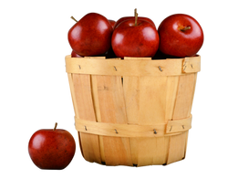 apples-1114059_Clip