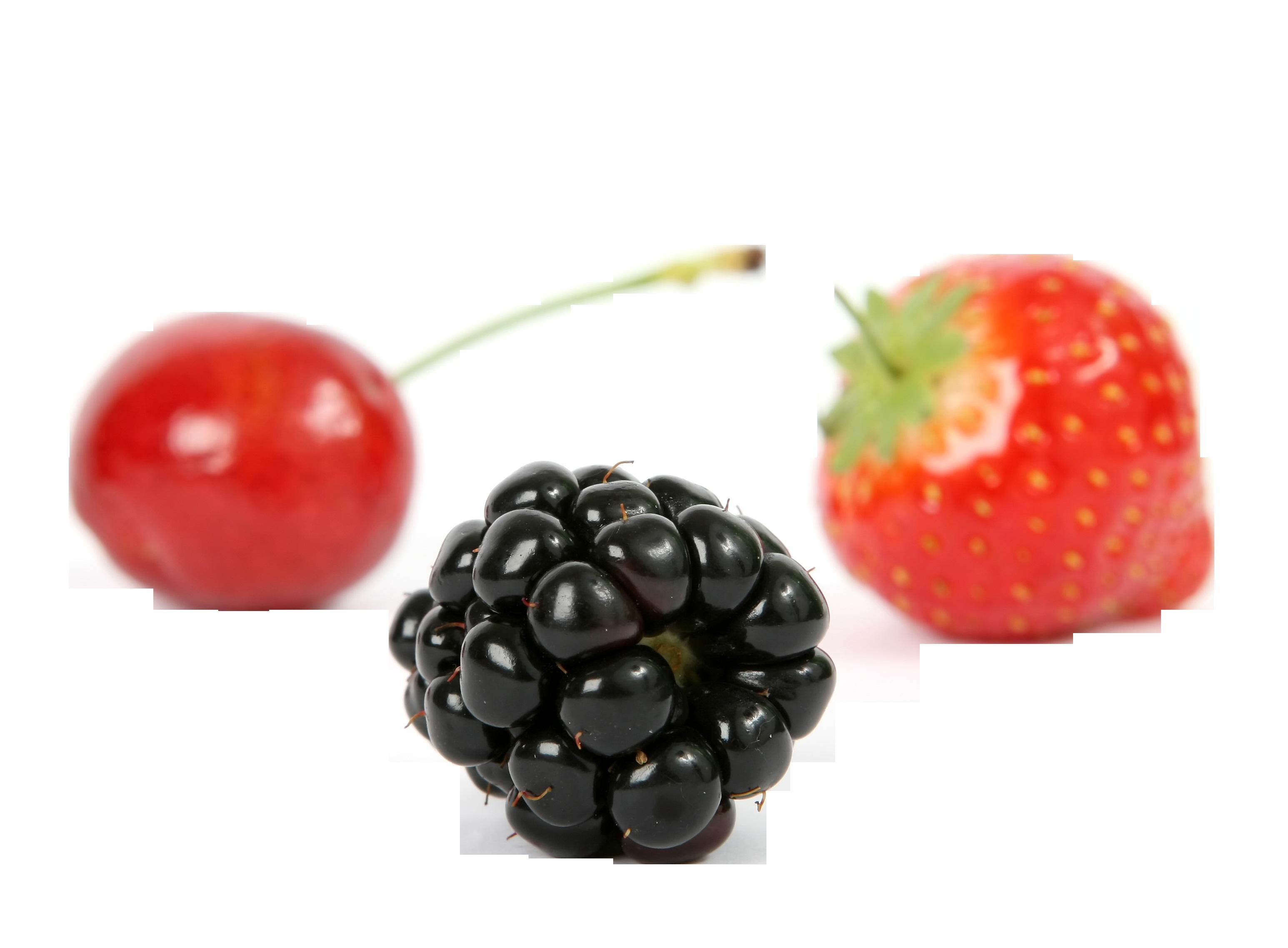berry-1239429_Clip