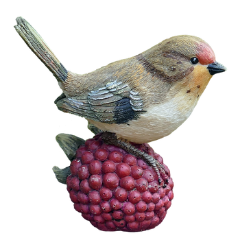PNG images: robbin