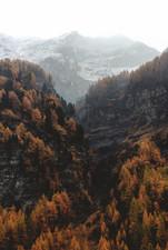 Cossyimages Autumn (94).jpg