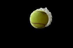 tennis-ball-1037034_Clip