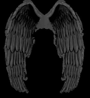 Wings-png-32