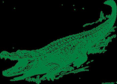 alligator-306548__340