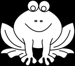 amphibian-150342__340