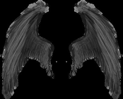 Wings-png-42