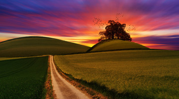 Cossyimages Sunset (69).jpg