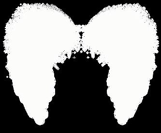 Wings-png-33