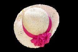 hat-825406_Clip