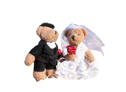 wedding-1034430_Clip