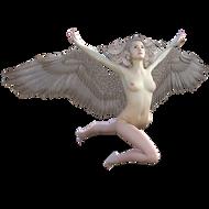 angel-2185256__340.png