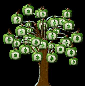 PNGPIX-COM-Dollar-Tree-PNG-Transparent-Image.png