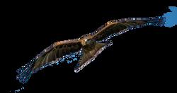 kite-1119277_Clip