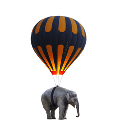 elephant-2635309_960_720.png