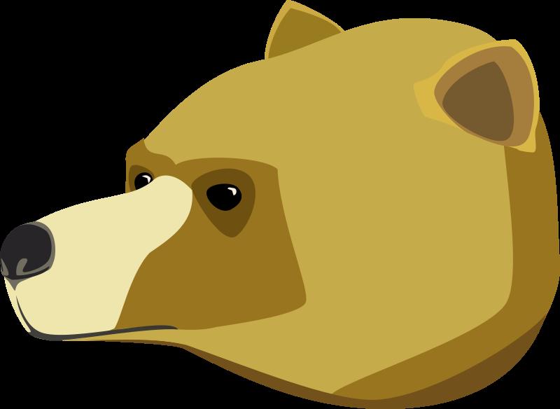 Anonymous_Bear