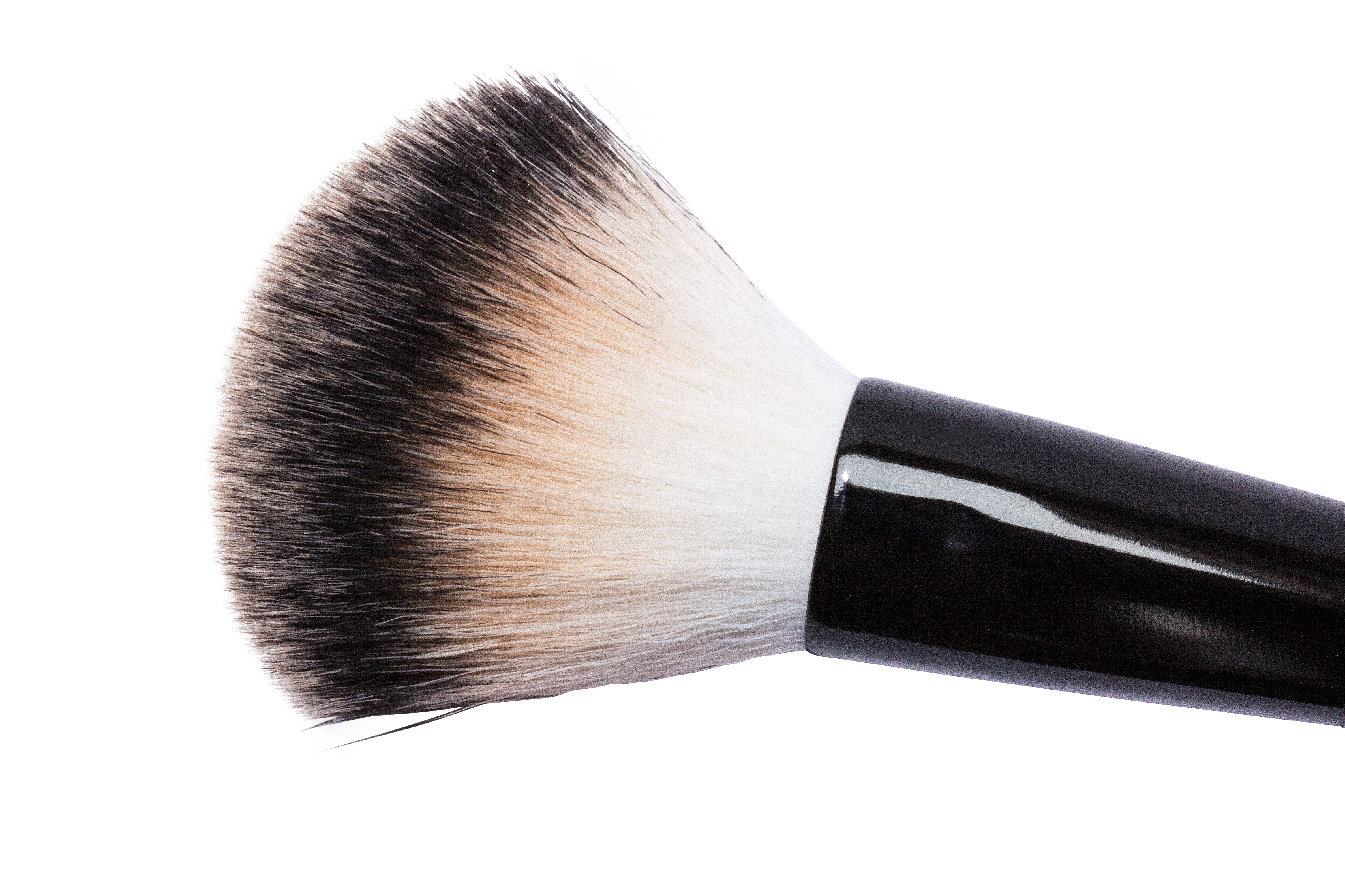 brush-259180_Clip