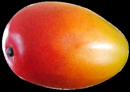 Mango-Fruit-PNG-image.png