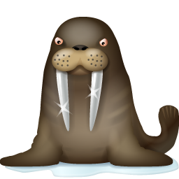 Walrus PNG images