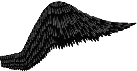 Wing-png-01