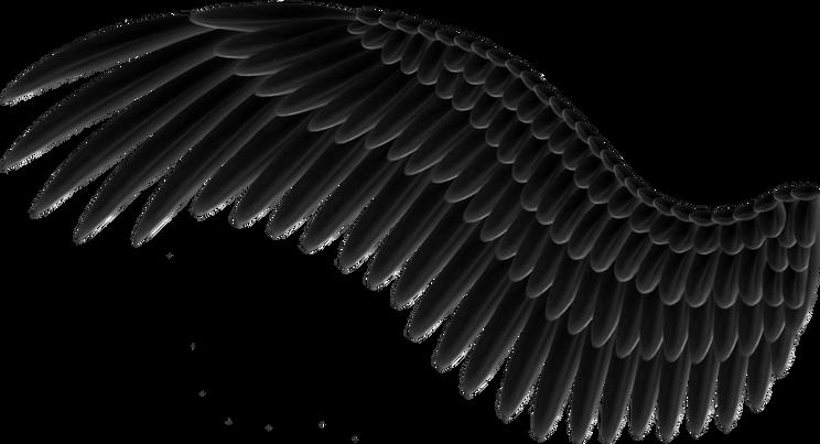 Wings-png-12