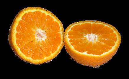 mandarin-2730818_960_720.png
