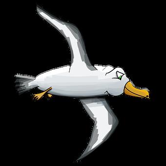 albatross-2320391__340