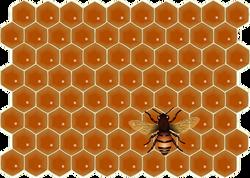 bee-307214__340.png