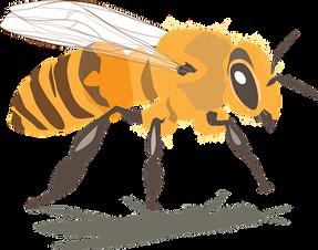 bee-2546134__340.png