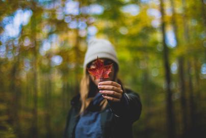 Cossyimages Autumn (20).jpg