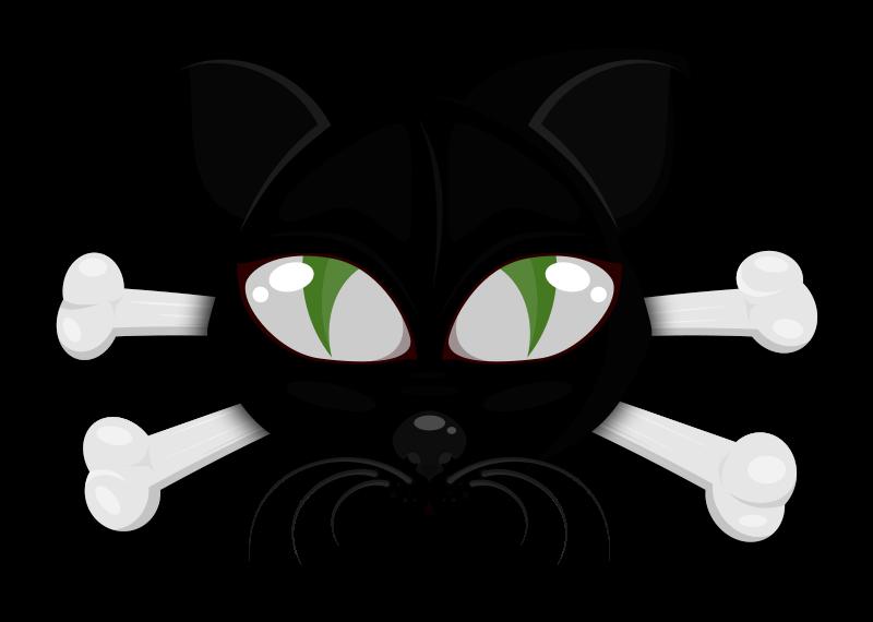 Gato_-_02