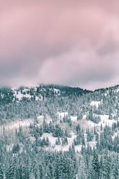 Cossyimages Winter (6).jpg