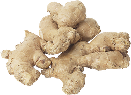 Ginger PNGs