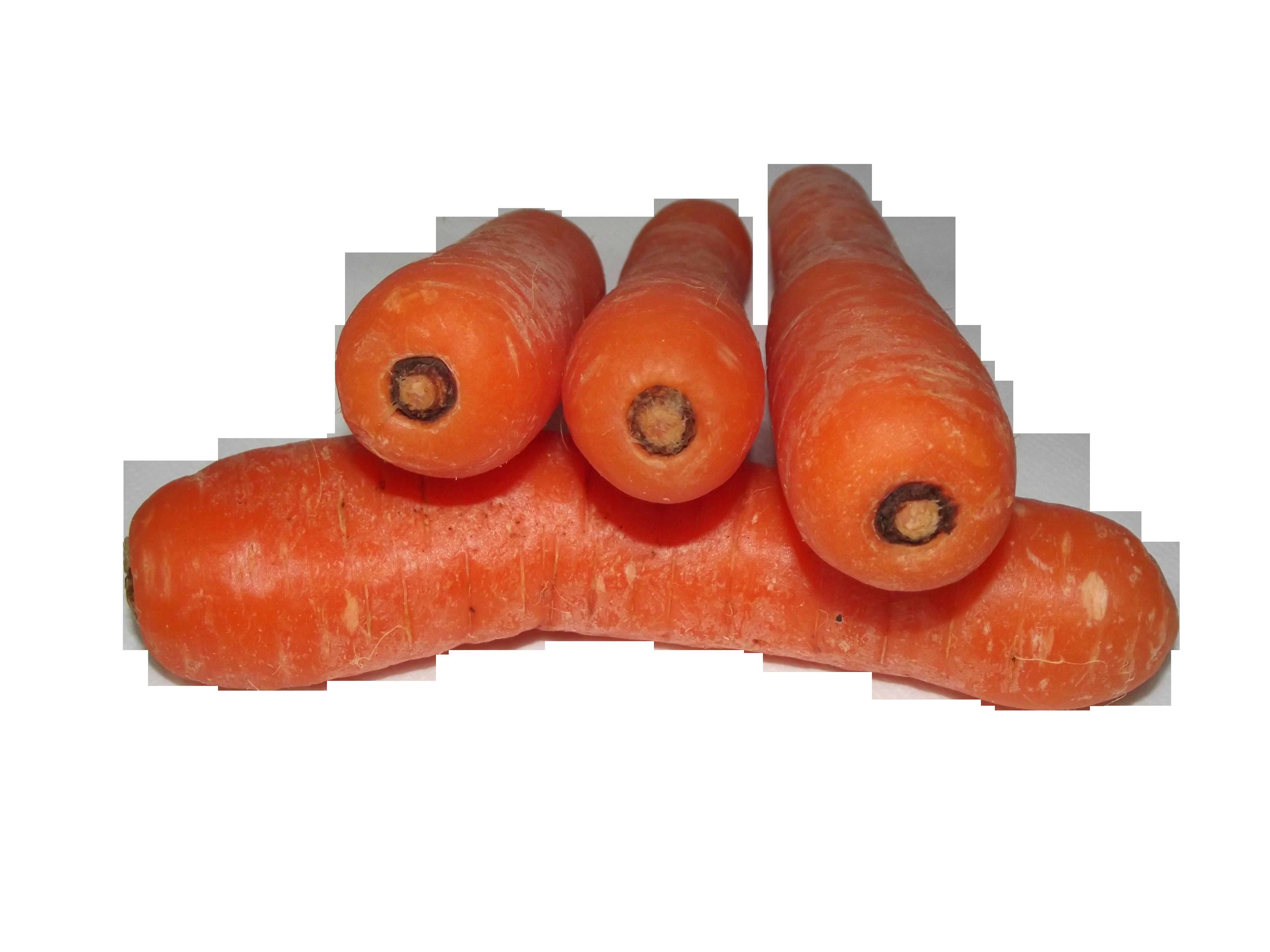 carrots-20382_Clip