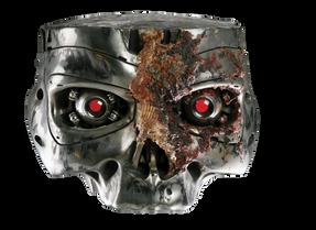 Terminator (49).png