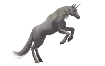Unicorn PNG images