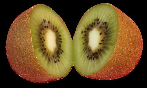 Kiwifruit-PNG-Image4.png