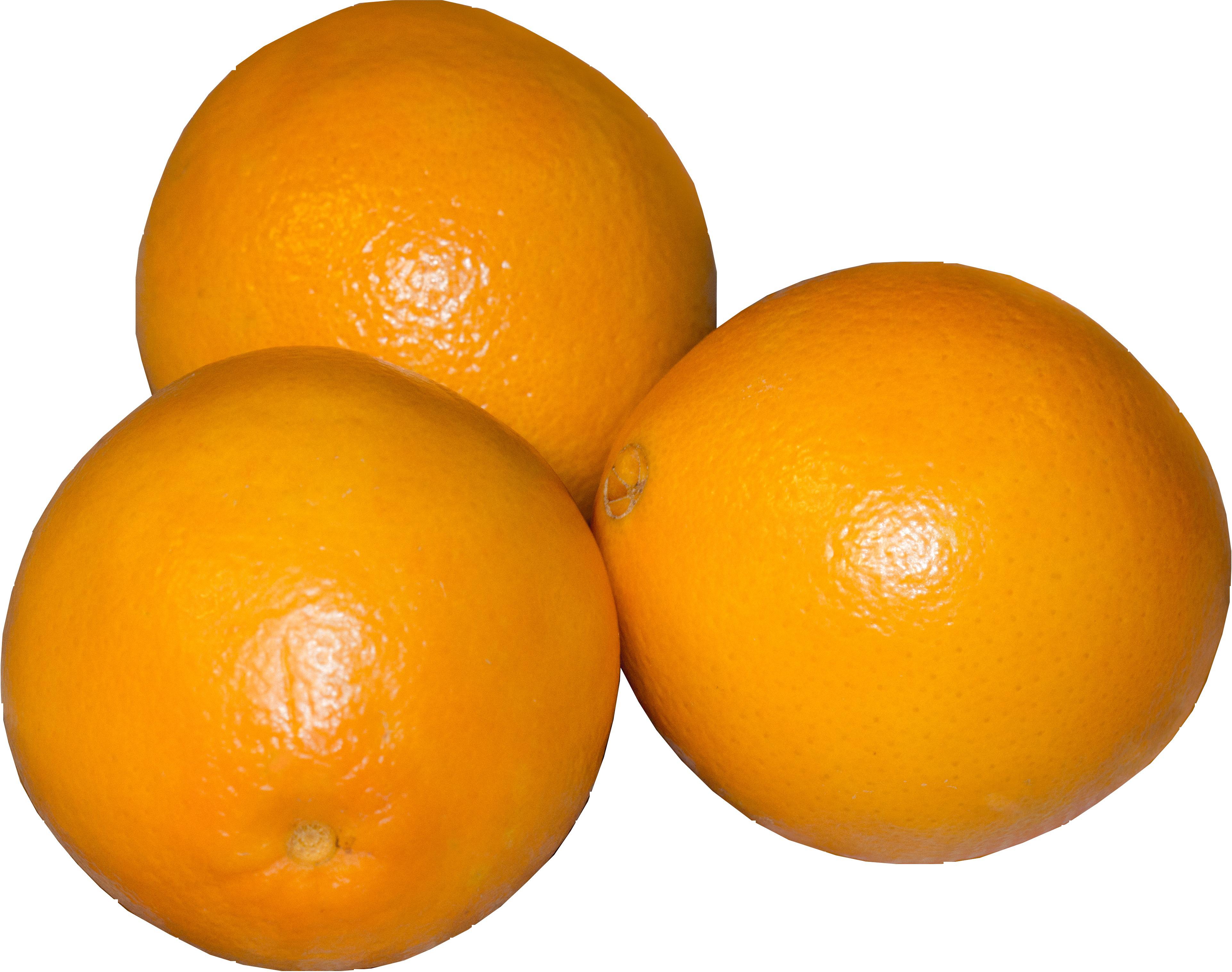 orange-207819_Clip