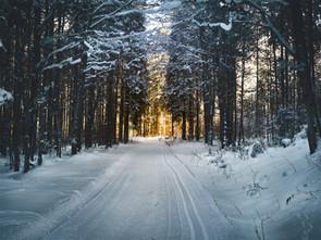 Cossyimages Winter (8).jpg