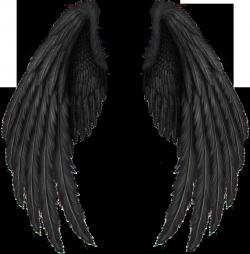 Wings-png-25