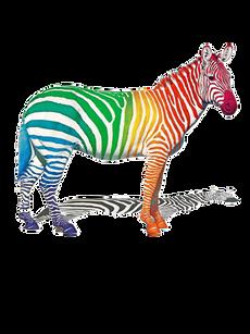 PNG images: Zebra