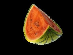 melon-943753_Clip
