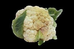 cabbage-957778_Clip