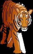 tiger-47858__340.png