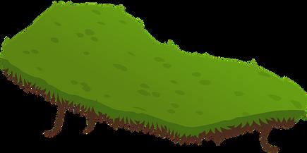 terrain-575538__340.png