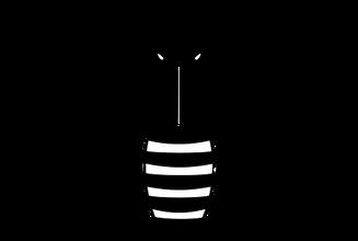 bee-161136__340.png