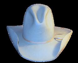 cowboy-hat-1248635_Clip